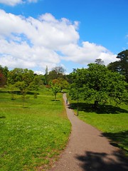 Singleton Park Swansea 25th May 2013 (21) (Gareth Lovering) Tags: park flowers gardens swansea wales botanical group olympus user omd lovering singleton asitis em5 oowug