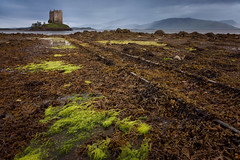 Castle Stalker (Billy Currie) Tags: uk sea house seaweed west building castle home stone wall landscape island coast scotland track ruin rail coastal stalker inlet slime clan stronghold isle tidal defence ruined appin