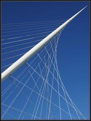 The Harp, bridge by Calatrava (Ciao Anita!) Tags: bridge netherlands canal nederland ponte calatrava kanaal brug harp arpa olanda santiagocalatrava canale noordholland haarlemmermeer hoofdvaart bluestblue nieuwvennep