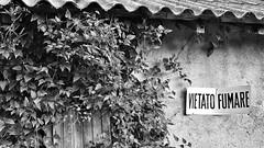 Italia 19 (' Gauthier http://gauthierandreani.livehost.fr) Tags: old house tree italia top emilia ruth emilie maison toit mur arbre panneau italie interdiction emiliaromagna ancien romagna fumer fumare vietatofumare vietato romagne montefiorino caldane interdictiondefumer emilieromagne lièrre