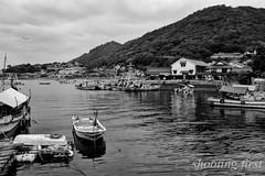 The old fishing port (Masaaki Kasamatsu) Tags: sea bw port boat town seagull hiroshima cape fujifilm setouchi tomonoura x100s