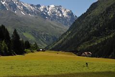 Autriche - Tyrol (xxx-NICO-xxx) Tags: road nature berg montagne tirol sterreich lac rivire glacier route ciel nuage animaux tyrol autriche chevaux chvre randonne sauvage