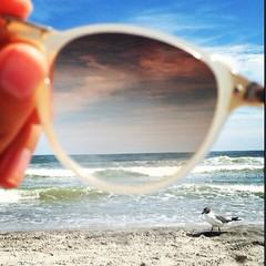 (lc_402) Tags: ocean city sun beach water birds newjersey sand atlantic brigantine jerseystrong uploaded:by=flickrmobile flickriosapp:filter=nofilter