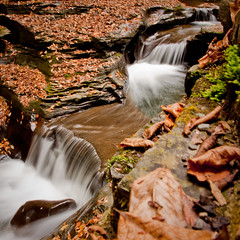 Autumn is gorges (matt.hintsa) Tags: statepark park autumn newyork fall geotagged waterfall unitedstates northamerica watkinsglen watkinsglenstatepark