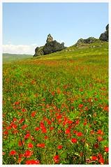 Sicilia (MICHELE IL SICILIANO) Tags: colorphotoaward flickraward rgspaesaggio regionalgeographicsicilia rgsscorci