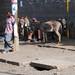 15_2009_01_Ethiopia_028