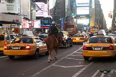 Modern  knight (David*e) Tags: nyc usa newyork yellow cab police timessquare mounted knight davide bigapple