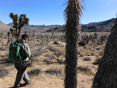 Smith Water Canyon Hike (The Cabin On The Road) Tags: joshuatree