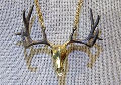 Deer2_IMG_7264