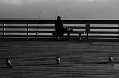 Untitled (ajkpix) Tags: california street sea blackandwhite bw man pier blackwhite fishing pigeons sanclemente fishingpole blackwhitephotos scattidistrada