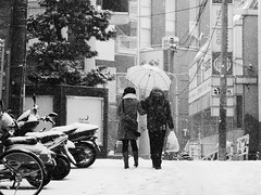 Snowing Tokyo Lovers (takeshi.onishi) Tags: snow tokyo shibuya lovers snowing