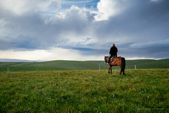riding with the clouds.jpg (Danny.Hu) Tags: china horse green clouds canon grassland ili