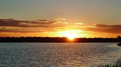 Jawbone - 5 (eternitybegins2day) Tags: sunset sky sun water birds clouds photography photo australia melbourne jawbone nightfall