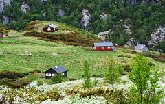 Fairy-tale Hills, Norway (Simon__X) Tags: travel blue vacation sky panorama sun mountain holiday 3 seascape tree