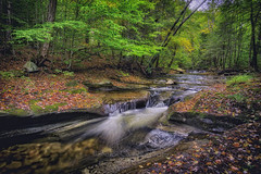 Cascades above Sullivan Falls, 2016.10.01 (Aaron Glenn Campbell) Tags: sullivanrun sgl13 stategamelands13 sullivancounty pennsylvania rural country outdoors optoutside nature moss lichen ferns water stream longexposure motionblur ±2ev hdr macphun aurorahdr2017 nikcollection viveza analogefexpro colorefexpro sony a6000 ilce6000 mirrorless rokinon 12mmf2ncscs wideangle primelens manualfocus emount
