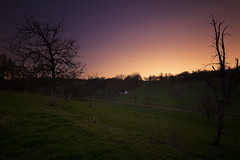 Under cover (simon.web92) Tags: night light pollution trees stars grass sigma 20mm