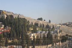 001 Gerusalemme panoramic_021 (Teodor Ion) Tags: terrasanta gerusalemme montesion israeljerusalem templemount oldcityofjerusalem