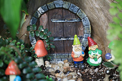 Whimsical Gnomes (Cindy's Here) Tags: whimsical gnomes whimsicalgnomes pebbles dof conservatory thunderbay ontario canada canon 44 117