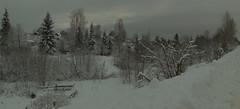 Impenetrable. (moshepotz) Tags: landscape winter evening snow dusk grey rurallife pikalyovo пейзаж зима вечер снег пикалёво бокситогорскийрайон ленинградскаяобласть