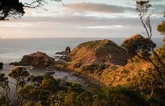 Sunrise at Cape Schanck (laurie.g.w) Tags: capeschanck headland pulpitrock firstlight sunrise ocean rock water nationalpark victoria australia seascape landscape shoreline coast