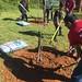 Highland_Renaissance_Tree_Planting_Event_2017 (35)