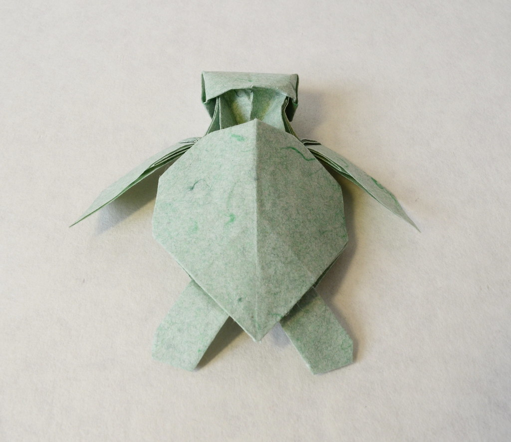 The worlds newest photos of origami and turtle flickr hive mind green sea turtle hatchling ponadr tags origami sea turtle paper green hatchling jeuxipadfo Image collections