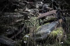 Båstnäs Car Cemetery (stefan@aaby) Tags: båstnäs bil värmland abandoned car abandonedcar decay decaying