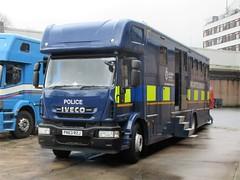 Lancashire Constabulary (PN63 RZJ) (ferryjammy) Tags: lancashire pn63rzj police policehorses mounted