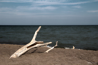The Tip of Long Point - Point Pelee National Park (Ontario, Canada)
