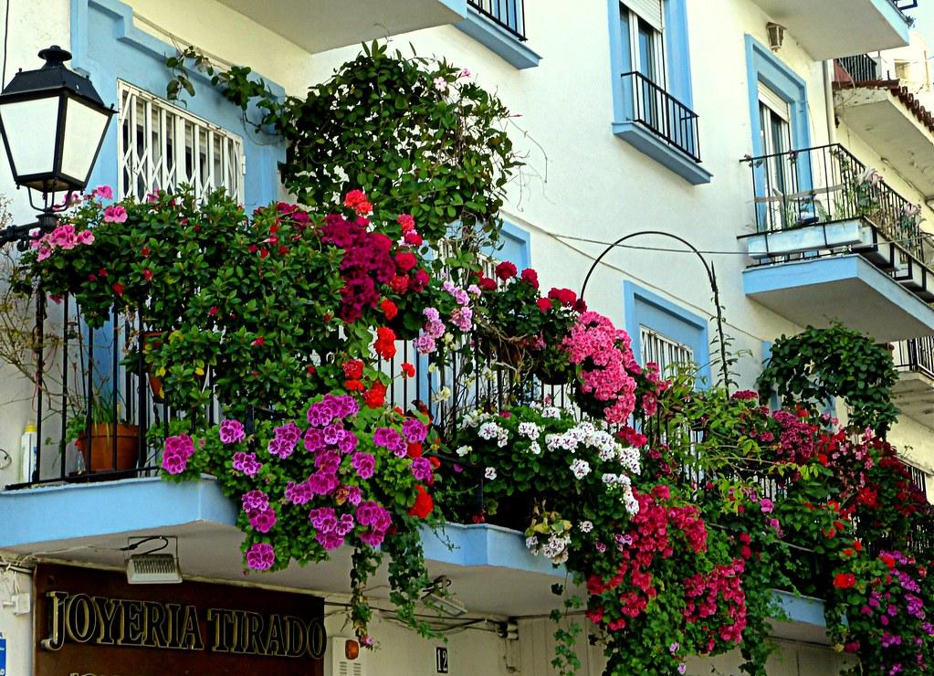 The Worlds Most Recently Posted Photos Of Balcones And Geranios - Fotos-de-balcones-con-flores