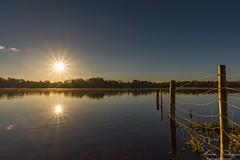 Mirrored Star (Martin_Finlayson) Tags: sunrise frensham star mirror water pond fence surrey spring april nikon d600 1835mm lightroom