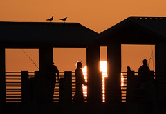 Fishing Pier Sunset (SDRPhoto321 Back from the field) Tags: fortdesoto fishing pier fort florida sunset