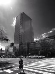 Untitled (Costa Rica Bill) Tags: japan iphone mono blackandwhite city cityscape street