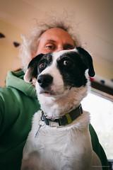16/52 – skepticism (stephubik) Tags: bubak dog portrait selfie 52weeksfordogs