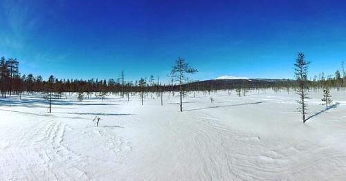 View of the day #xcski #perfectsnow #bluesky #levi #lapland