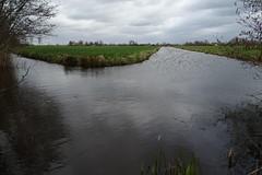 20170319 36 Kockengen (Sjaak Kempe) Tags: 2017 lente sjaak kempe sony dschx60v nederland netherlands niederlande provincie utrecht kockengen water sloot ditch holland waterland