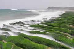 老梅 (Tariq Peng) Tags: fujifilm fuji xt1 xf1655mm f28 gnd cpl 漸層鏡 富士 風景 大自然 台灣 taiwan art city sea nature landscape taipei 老梅石槽 新北市石門 陰天 下雨 green