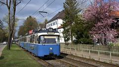 Farbenfroh zeigt sich die Grünwalder Straße kurz vor dem Klinikum Harlaching (Bild: Andy Paula) (Frederik Buchleitner) Tags: 2005 3004 linie15 munich münchen pwagen strasenbahn streetcar tram trambahn