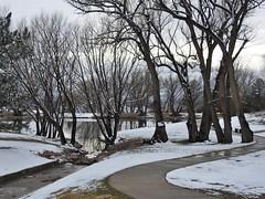 Winter comes and goes in Colorado Springs (Jane Lazarz) Tags: janelazarz walkingcolorado coloradosprings colorado nikon nikoncoolpixp900 nikonp900 winterscene reflectionpond