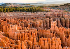 Bryce Canyon 9 (Shelley M Eaton) Tags: bryce canyon utah landscape hoodoo rock