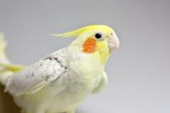 TAKAHIRO 画像24