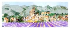 Apt - Provence - France (guymoll) Tags: apt provence france panoramique panoramic moleskine sketchboook lavande champdelavande lavender aquarelle watercolour watercolor