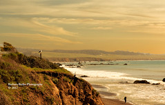 Seagull at Sunset (RedHatGal: Barbara Butler/FireCreek Photography) Tags: coastline beach ocean sea sand waves cliffs walkeronthebeach seagull goldenlight centralcoast oldbarn sunset hills barbarabutlerphotography firecreekphotography redhatgal