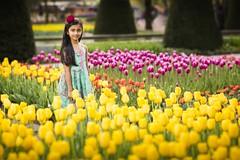 Girl & Tulips (♥siebe ©) Tags: 2017 holland keukenhof lisse nederland netherlands siebebaardafotografie thenetherlands dutch familie family flowers fotoshoot garden photoshoot portrait portret tulip tulips wwwsiebebaardafotografienl