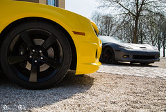 Chevrolet camaro vs Chevrolet Corvette C6 Z06 (Raf Debruyne) Tags: chevroletcamaro chevroletcorvette chevrolet camaro corvette c6 z06 c6z06 canon canoneos5dmk3 canoneos5dmkill canoneos5dmkiii 5dmkiii 5dmarkiii 5d eos 24105mmf4 24105mm canon24105mmf4 canonef24105mmf4lusm kasteeldehoogenweerth kasteel hoogenweerth maastricht car carshow worldcars dreamcar v8 netherlands thenetherlands nederland wheels debruyneraf debruynerafphotography rafdebruyne auto automobile voiture