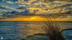 bra cliffs (The Photo Smithy) Tags: maroubra nsw southernbeaches sydney cliffs dawn sunrise