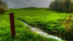 Pure  Nature HFF (Yasmine Hens +4 800 000 thx❀) Tags: fence happyfencefriday nature green hdr ruisseau water hff hensyasmine leica leicaq saariysqualitypictures
