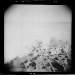 January Shores 001 (noahbw) Tags: hln abstract beach blackwhite blackandwhite bw doubleexposure doubled film flickr holga holgalens horizon lake landscape lofi minimal minimalism monochrome noahbw sand shore shoreline sky square toylens trees water winter