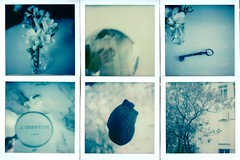 identité(s) (marion (milky soldier)) Tags: polaroid impossible mosaic beta30 testfilm identity sx70 instantfilm roidweek roidweek2017 polaroidweek key flower heart mirror reflection blue
