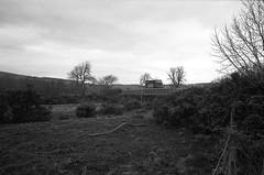 John Lewis delivers (Man with Red Eyes) Tags: delta100 ilford harman hc110 160 115mins v850 leicam2 summicron35mmf2 v4 iv analog blackwhite monochrome silverhalide a3minsb3mins sunnysixteen northumbria northumberland ingram riverbreamish johnlewis delivery bidge river